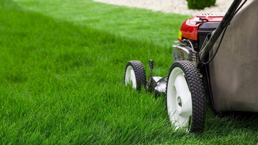 Insurance for Landscaping Business in Spanish